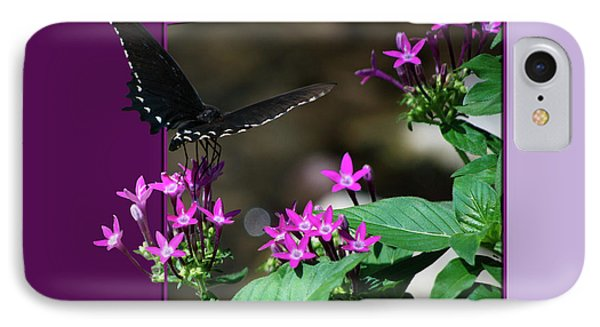 Black Butterfly IPhone Case by Thomas Woolworth