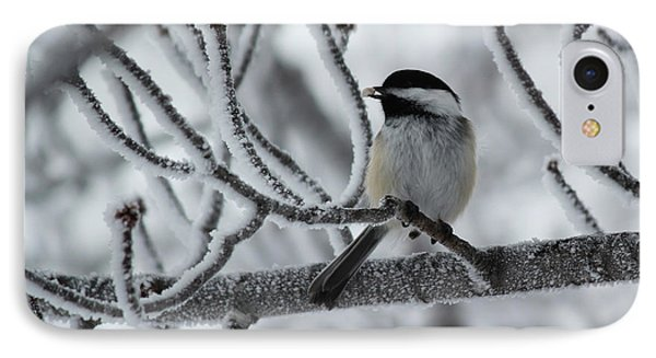 IPhone Case featuring the photograph Black-capped Chickadee by Ryan Crouse