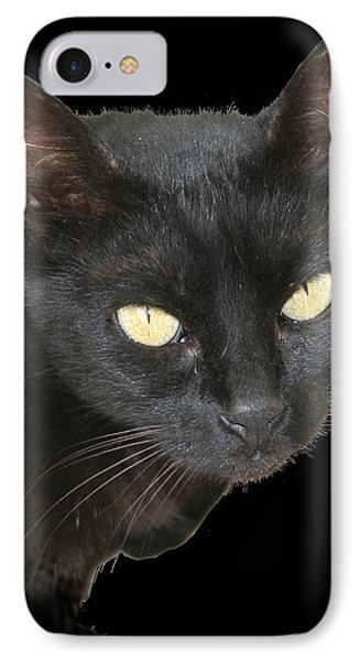 Black Cat Isolated On Black Background Phone Case by Tracey Harrington-Simpson