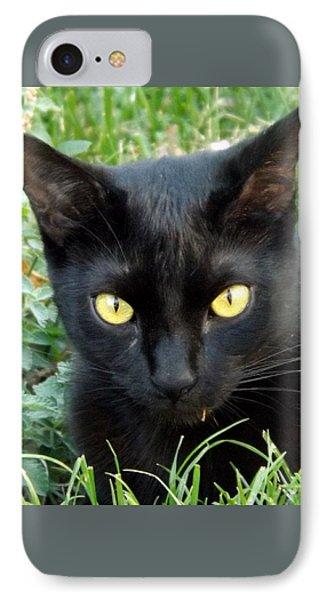 Black Cat IPhone Case by Lingfai Leung