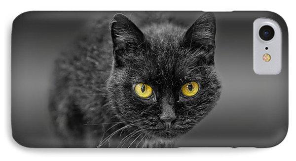 Black Cat IPhone Case by Peter Lakomy