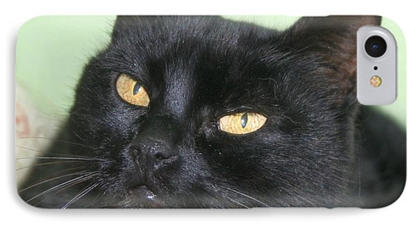 Black Cat Phone Case by Tracey Harrington-Simpson
