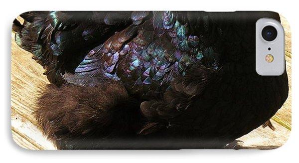 IPhone Case featuring the photograph Black Cochin by Sherman Perry