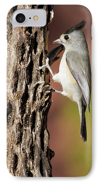 Titmouse iPhone 7 Case - Black-crested Titmouse (baeolophus by Larry Ditto