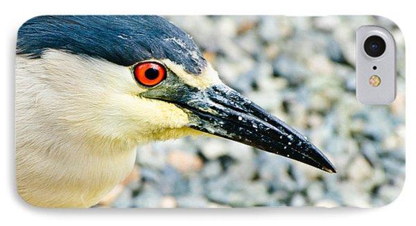 Black Crowned Night Heron 2 Phone Case by Bob and Nadine Johnston