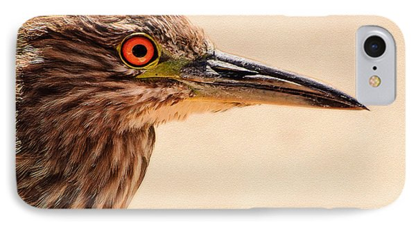 Black Crowned Night Heron 4 Phone Case by Bob and Nadine Johnston