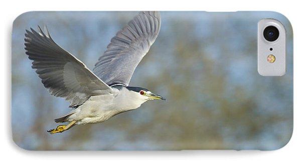 Black- Crowned Night Heron Phone Case by Bryan Keil