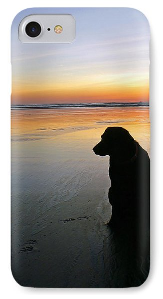 Black Dog Sundown IPhone Case
