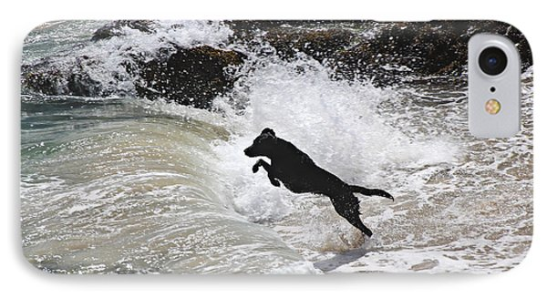 Black Dog IPhone Case by Tom Conway