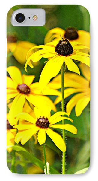 Black Eyed Susan 1 Phone Case by Marty Koch