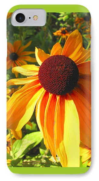 IPhone Case featuring the photograph Black-eyed Susan In Your Face by Brooks Garten Hauschild