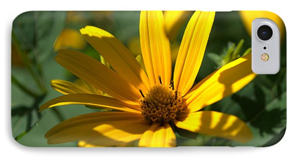 IPhone Case featuring the photograph Black Eyed Susan by Cathy Shiflett