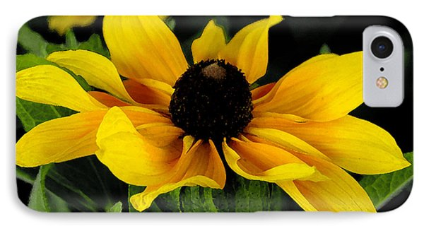 IPhone Case featuring the photograph Black Eyed Susan  by James C Thomas