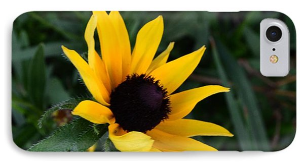 IPhone Case featuring the photograph Black-eyed Susan Glows With Cheer by Luther Fine Art