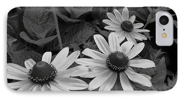 Black-eyed Susan Macro IPhone Case