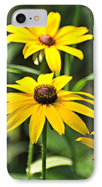 Black Eyed Susan Phone Case by Marty Koch