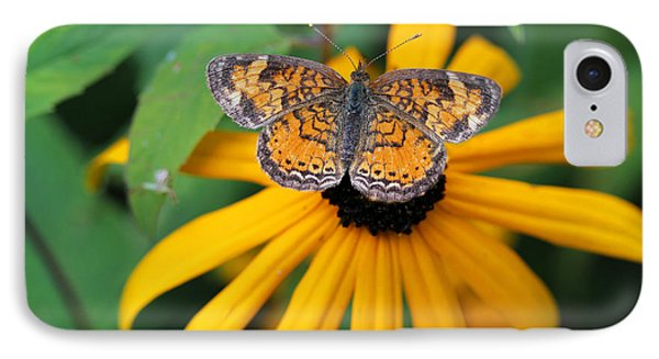 Black Eyed Susan With Butterfly IPhone Case by Mary Bedy
