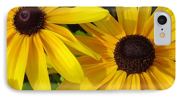 Black-eyed Susans Close Up Phone Case by Suzanne Gaff