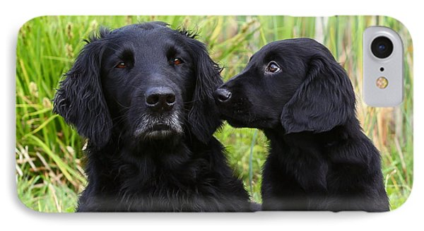 Black Flat Coated Retriever With Puppy IPhone Case by Dog Photos