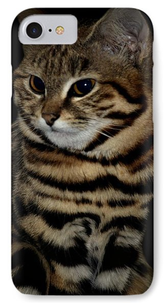 Black-footed Cat Phone Case by Maria Urso