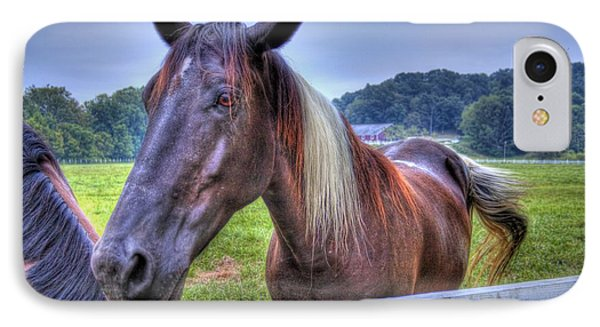 Black Horse At A Fence IPhone Case by Jonny D
