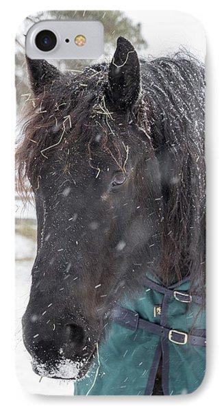 Black Horse In Snow IPhone Case