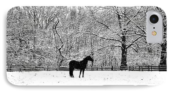 Black Horse In The Snow Phone Case by Bill Cannon