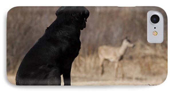 Black Lab Watching Deer IPhone Case