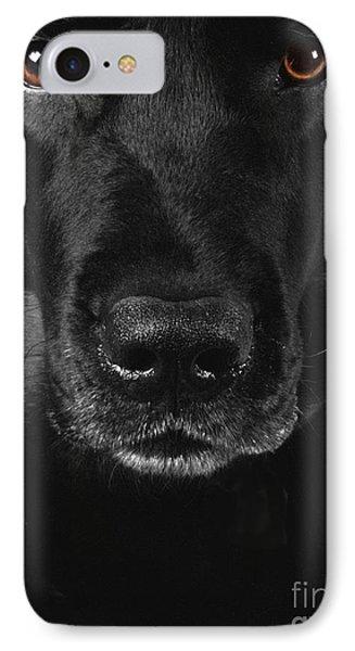 Black Labrador Retriever IPhone Case by Diane Diederich
