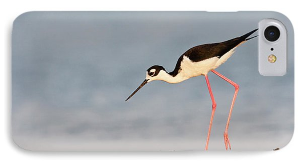 Black- Necked Stilt (himantopus IPhone Case by Larry Ditto