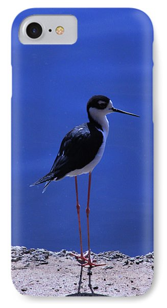 IPhone Case featuring the photograph Black-necked Stilt by Richard Stephen