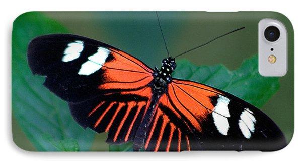 Black Orange And White IPhone Case by Karen Stephenson