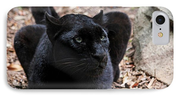 Black Panther IPhone Case by Judy Vincent