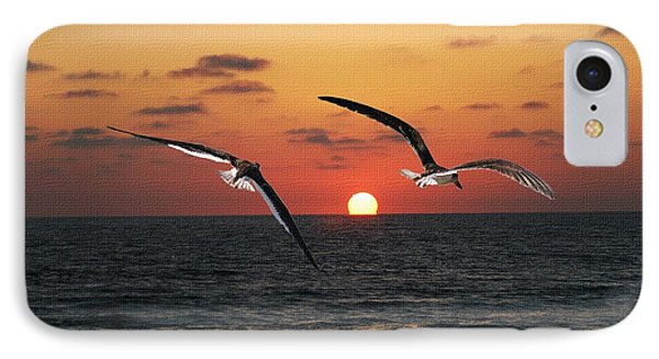 Black Skimmers At Sunset IPhone Case by Tom Janca