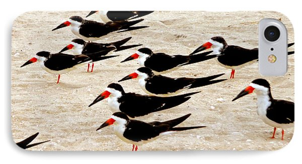 IPhone Case featuring the photograph Black Skimmers On The Beach by Jim Whalen