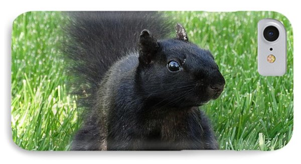 Black Squirrel IPhone Case