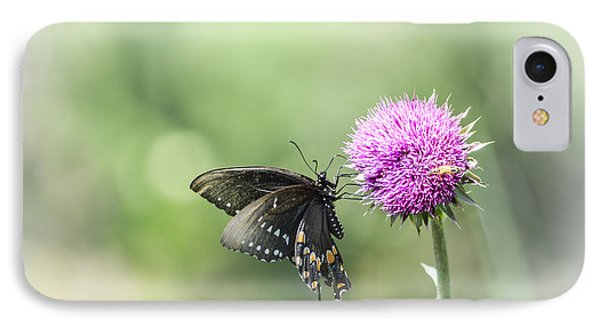 Black Swallowtail Dreaming IPhone Case by Debbie Green
