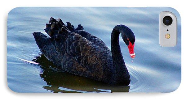 Black Swan IPhone Case by Cassandra Buckley