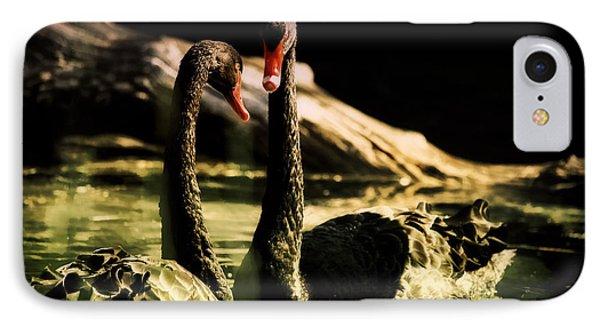 Black Swan IPhone Case by Diane Dugas
