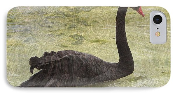Black Swan IPhone Case by Kathie Chicoine