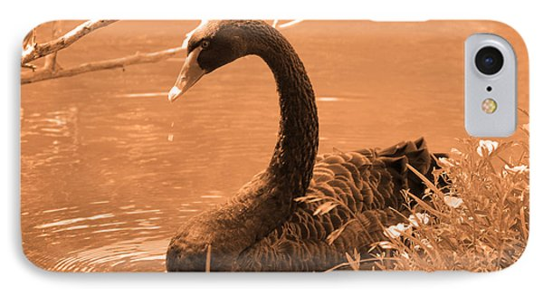 IPhone Case featuring the photograph Black Swan by Leticia Latocki