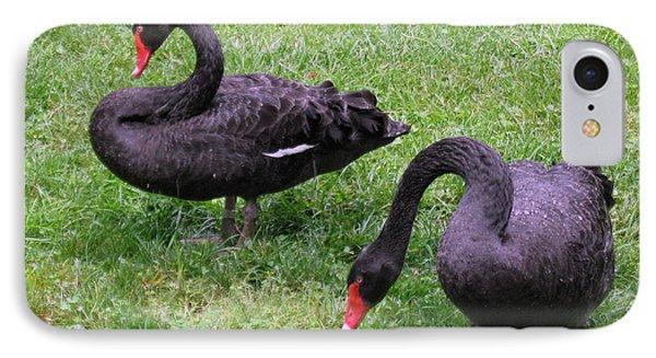 Black Swans IPhone Case
