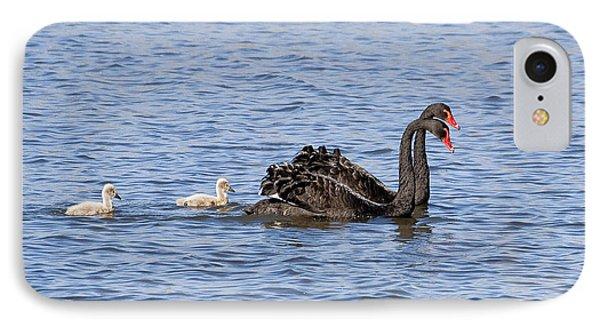 Black Swans Phone Case by Steven Ralser