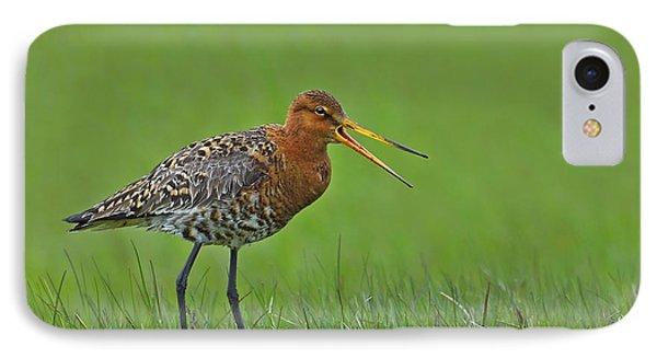 Black-tailed Godwit Phone Case by Tony Beck