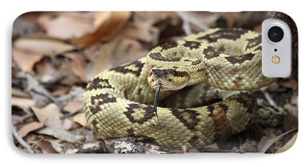 Black-tailed Rattlesnake IPhone Case by Brian Magnier