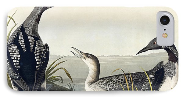 Black Throated Diver  IPhone 7 Case by John James Audubon