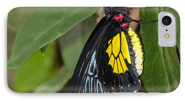 Black Yellow And Red Phone Case by Karen Stephenson