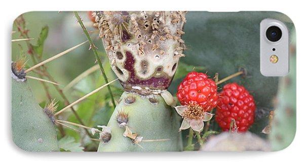 Blackberries Are Coming Phone Case by Lorri Crossno