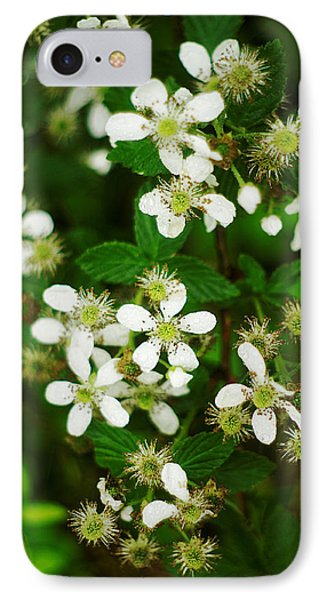 IPhone Case featuring the photograph Blackberry Blossoms by Suzanne Powers