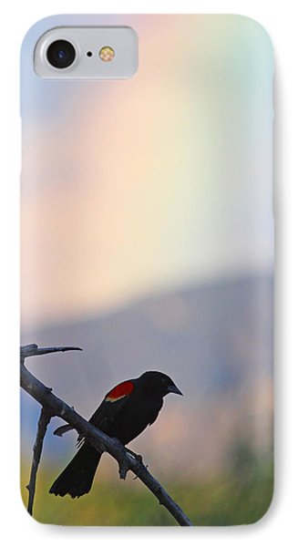 Blackbird In Front Of Rainbow IPhone Case by Brian Magnier